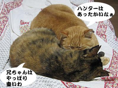 12_12_11_2.jpg