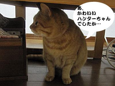 12_12_18_6.jpg