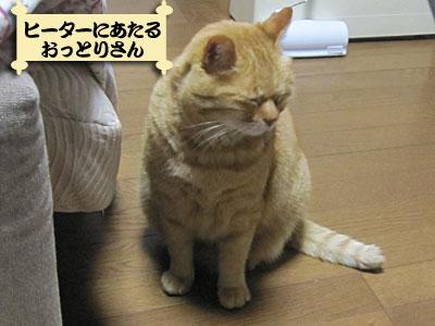 13_01_10_1.jpg