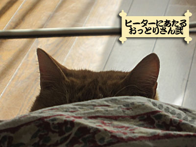 13_01_10_2.jpg