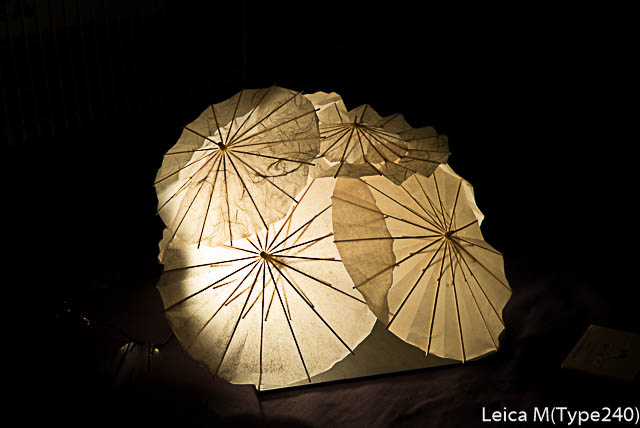 lightroomresize-1000122.jpg