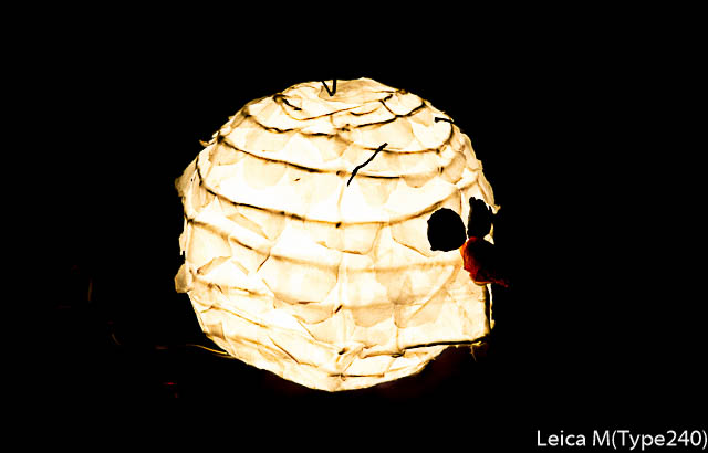 lightroomresize-1000128-2.jpg