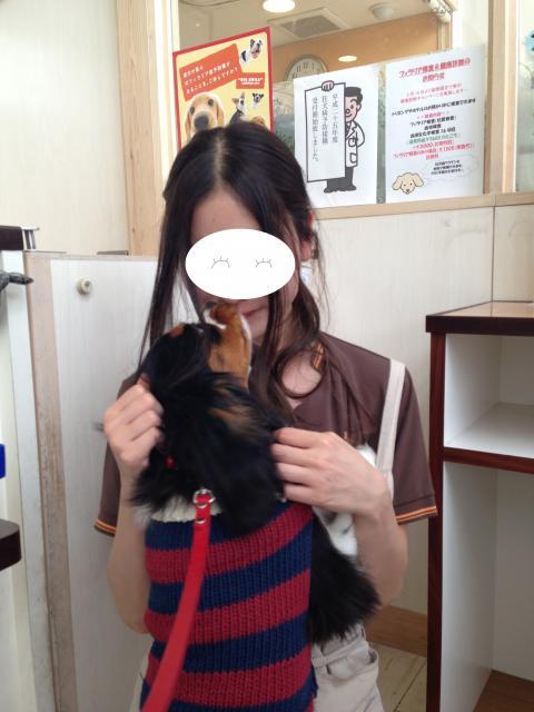 縺翫・縺医&繧難シ胆convert_20130411152218