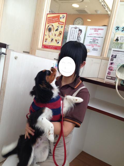 縺翫・縺医&繧難シ狙convert_20130411152149