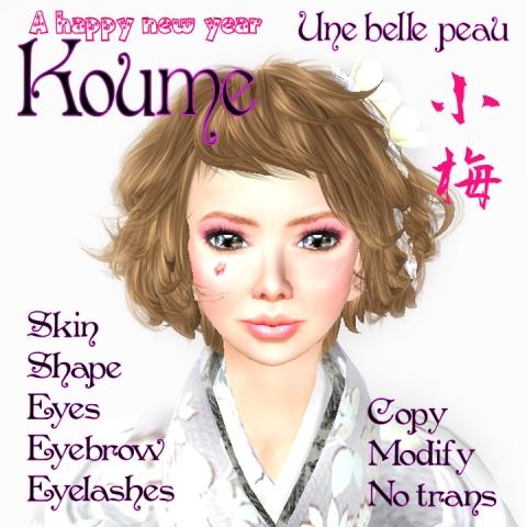 Koume_panel480.jpg