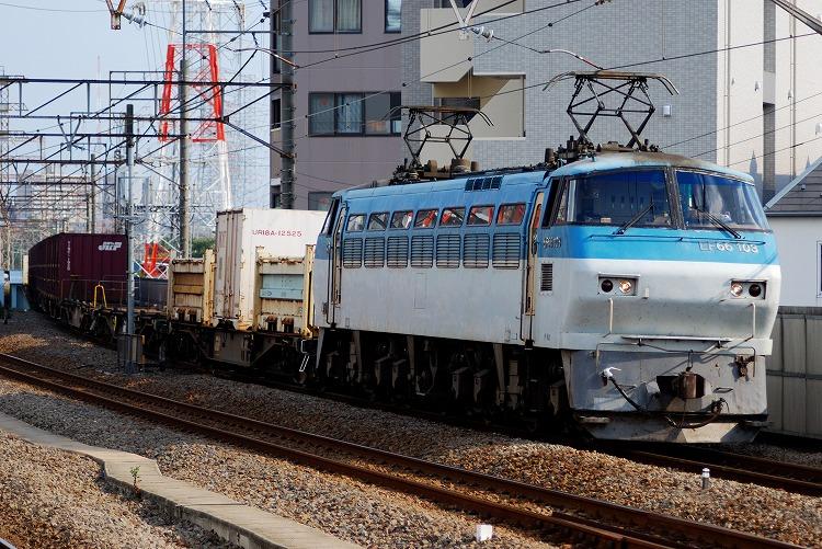 DSC_5004.jpg