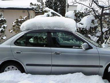 雪をかぶった愛車