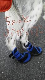 fc2blog_201210112024404d1.jpg