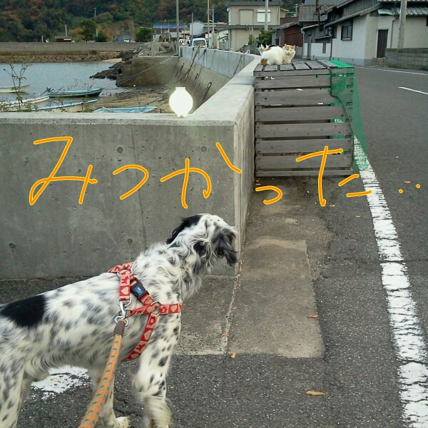 fc2blog_20121201211437a1a.jpg