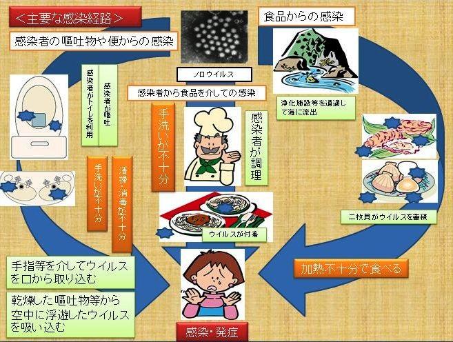 image_20130116195105.jpg