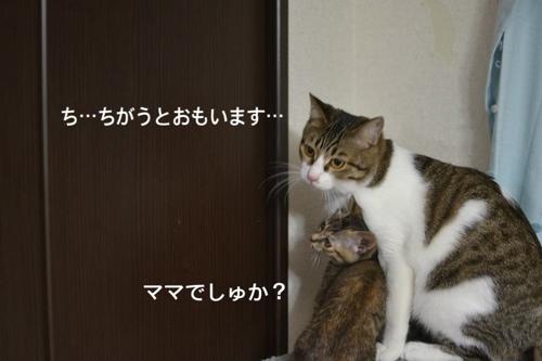 fc2blog_20140131065209a7c.jpg