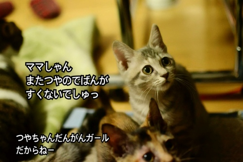 fc2blog_20140209014919290.jpg