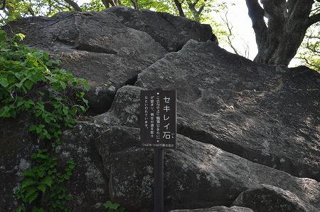 筑波山_20120519_535