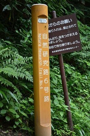 高尾山__12