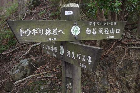 棒ノ折山__75