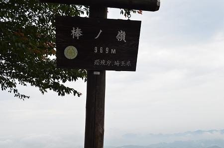 棒ノ折山__100