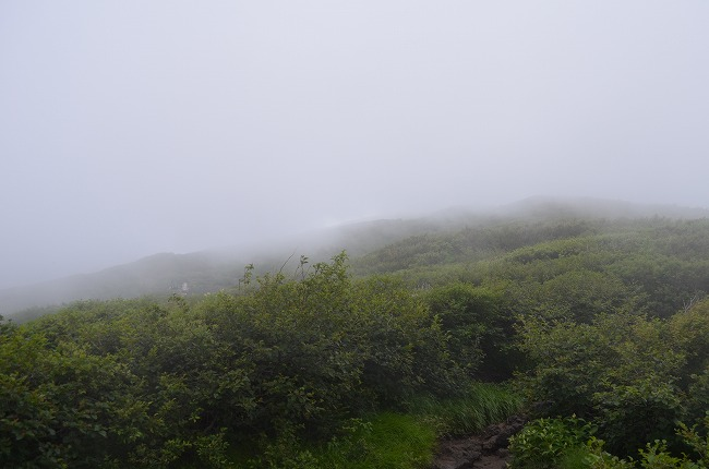 富士山__65