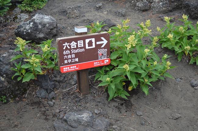富士山__57