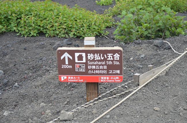 富士山_169 (245)