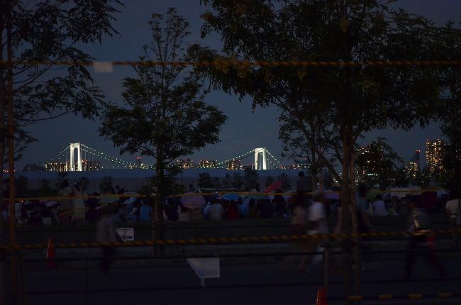 東京湾花火 (45)