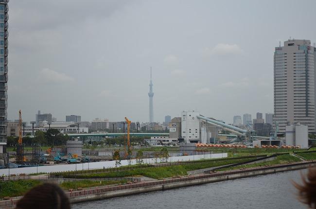 東京湾花火 (3)