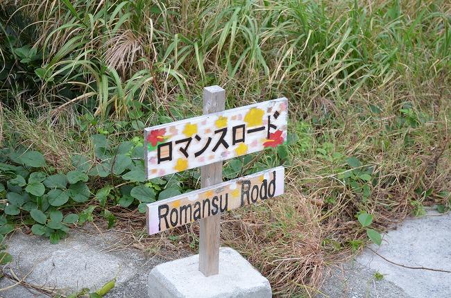 沖縄_2012 (72)