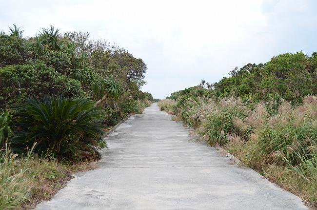 沖縄_2012 (71)