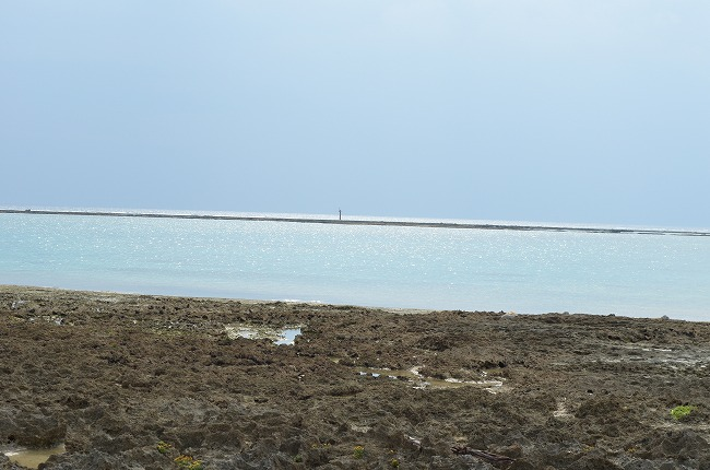沖縄_2012 (57)