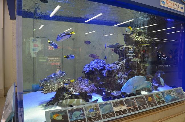 沖縄_2012 (14)