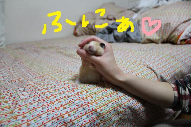 IMG_2504.jpg