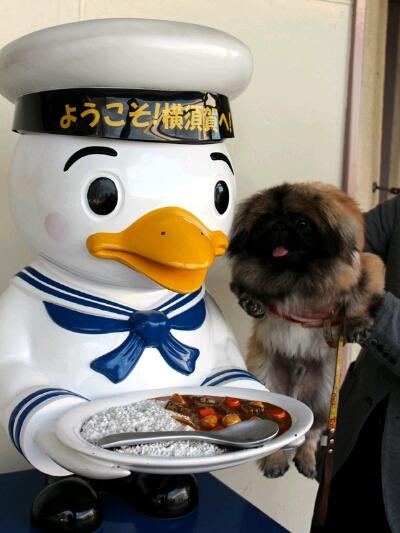 fc2blog_20121201222358e13.jpg