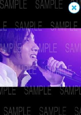 7netshopping_jp_20120530_172031.jpg