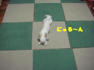 201207201110491cf.jpg