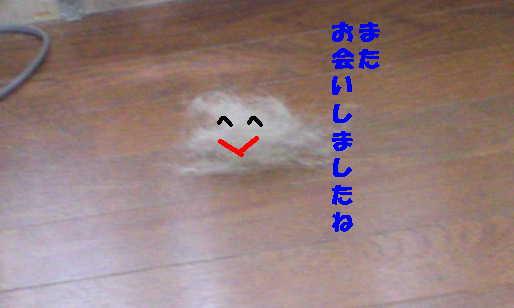 201208091010471f4.jpg