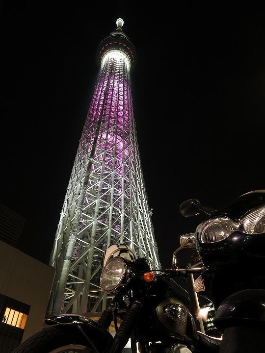 shuku-IMG_0231.jpg