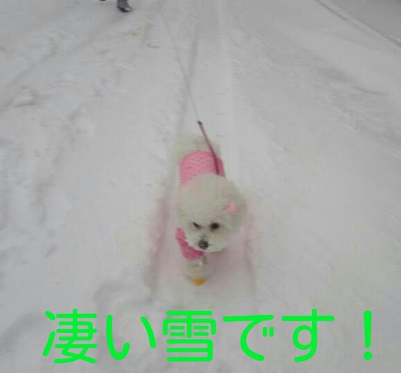 CYMERA_20140210_001618.jpg