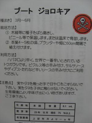 IMG_1169_縮小