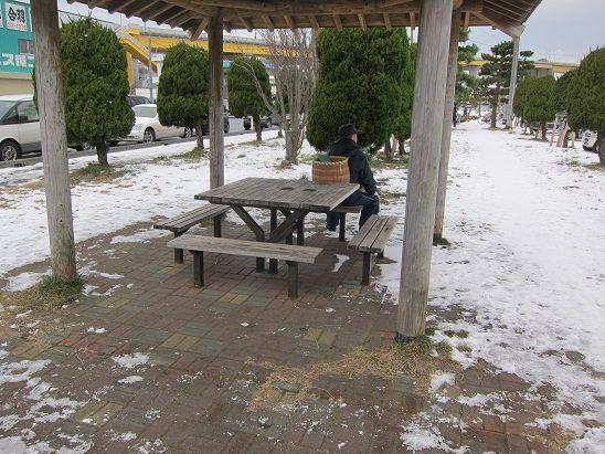 館鼻漁港 公園