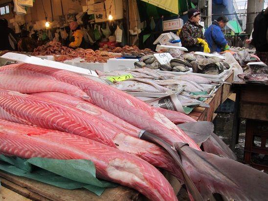 八戸市営魚菜小売市場 12月30日