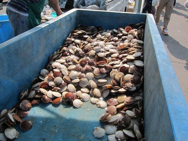 大漁ほたて貝