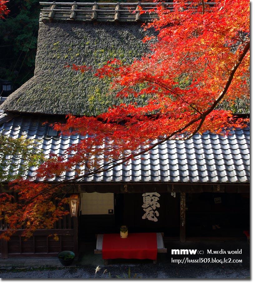 kyoto_au07.jpg