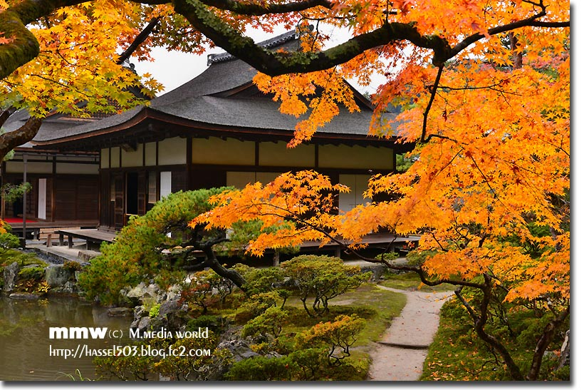 kyoto_au20.jpg