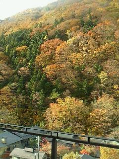 Hananoyu744000.jpg