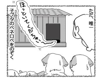 羊の国のラブラドール絵日記シニア!!「(朝)6時だよ!全員集合!」4