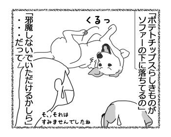 羊の国のラブラドール絵日記シニア!!「どうした!?クロエちゃん!」4