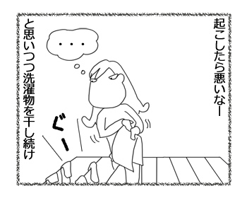 25112014_3.jpg