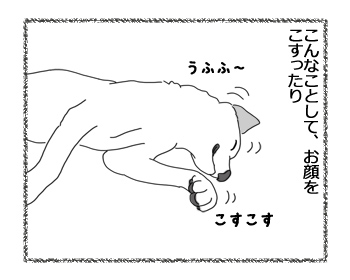 羊の国のラブラドール絵日記シニア!!「レイトショー」2