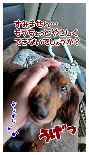 0501_03.jpg