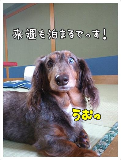 0918_05.jpg