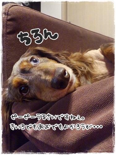 1026_03_20121026120906.jpg